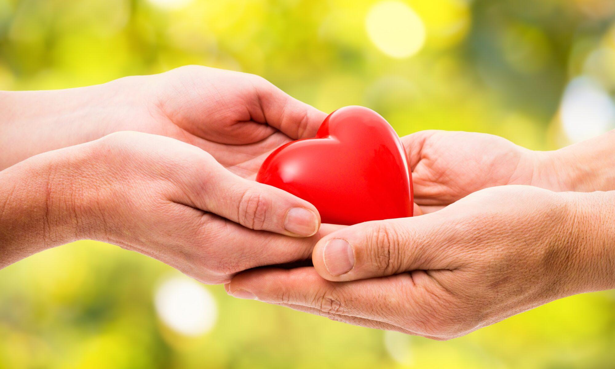Vier Hände halten ein rotes Herz