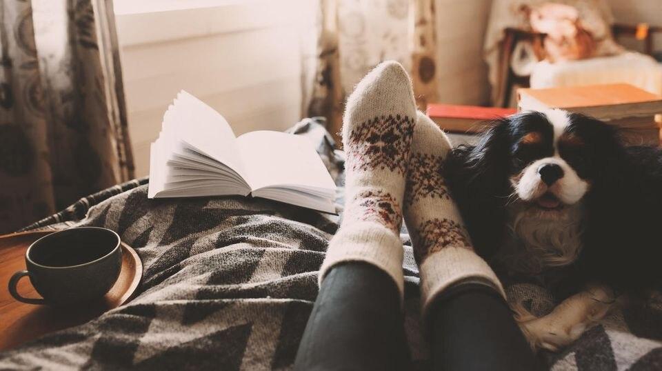Zuhause entspannen und ein Buch lesen