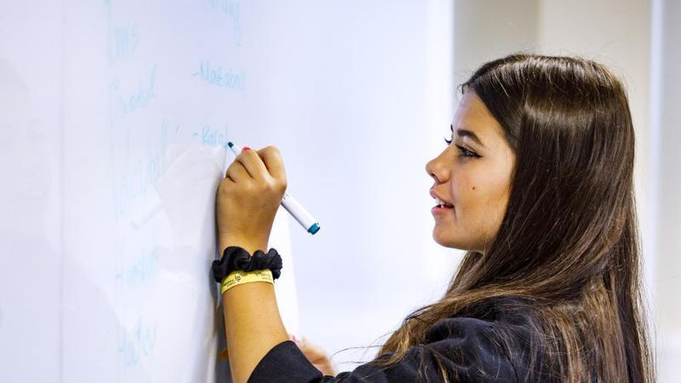Sprachen lernen, aber nicht mehr unbedingt in weiter Ferne: Viele Anbieter von Sprachcamps haben sich an Corona angepasst. Foto: Christoph Buckstegen/offaehrte sprachreisen GmbH & Ko. KG/dpa-tmn