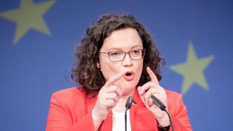 Andrea Nahles, Fraktionsvorsitzende der SPD und SPD-Parteivorsitzende. Foto:Kay Nietfeld/Archiv