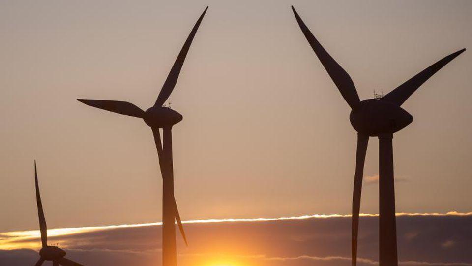 Die Sonne geht hinter Windkraftanlagen unter. Foto: Klaus-Dietmar Gabbert/zb/dpa