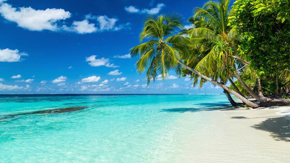 Unser Reiseexperte hilft Ihnen weiter