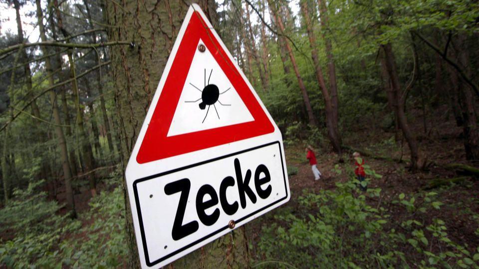 Zecken-Warnung im Landkreis Offenbach
