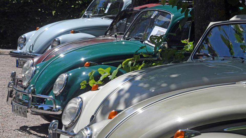 Bei einer Oldtimershow werden verschiedene historische VW-Käfer präsentiert. Foto: Uli Deck/Archivbild