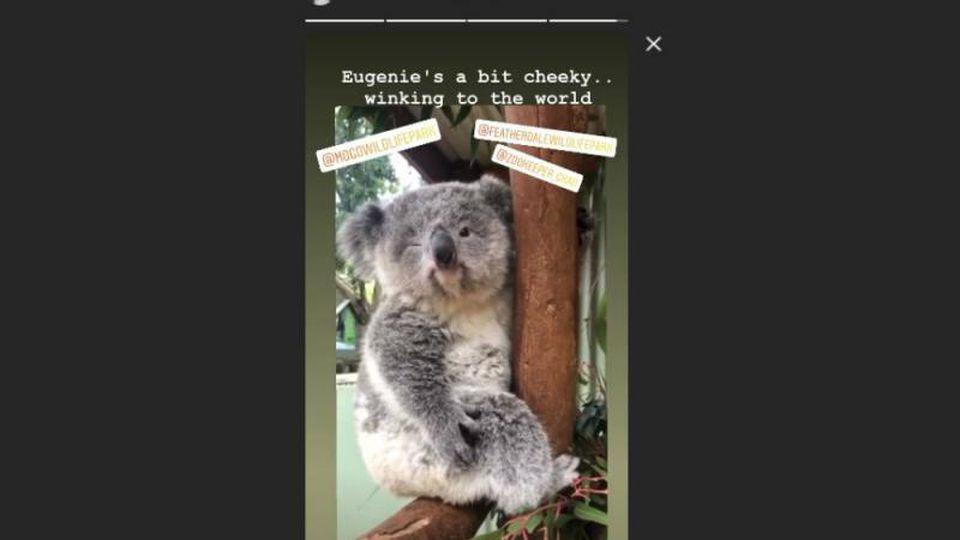 Prinzessin Eugenie koalababy Instagram