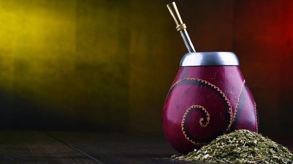 Mate, das südamerikanische Traditionsgetränk, wird aus den getrockneten Blättern des gleichnamigen Strauches hergestellt