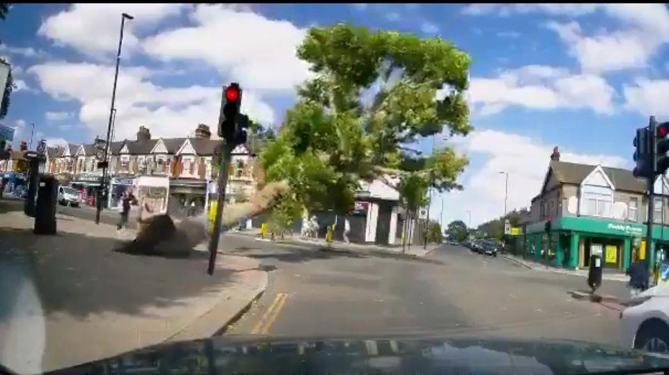 Baum kippt auf die Straße.