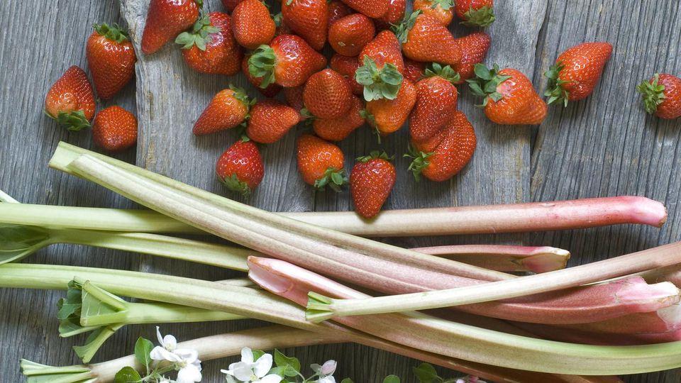 Endlich haben Erdbeeren und Rhabarber Saison.