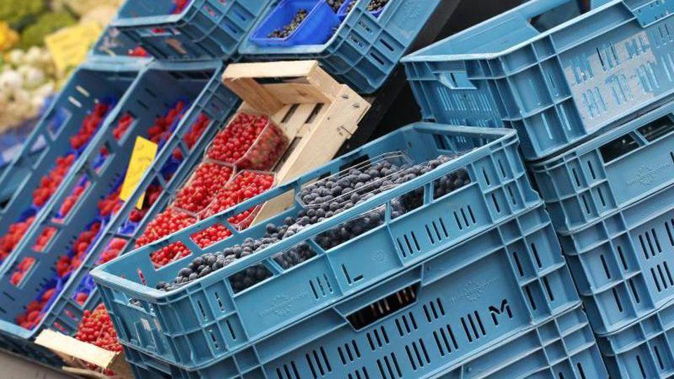 Obstkisten an einem Marktstand. Foto: Martin Gerten/dpa/Symbolbild