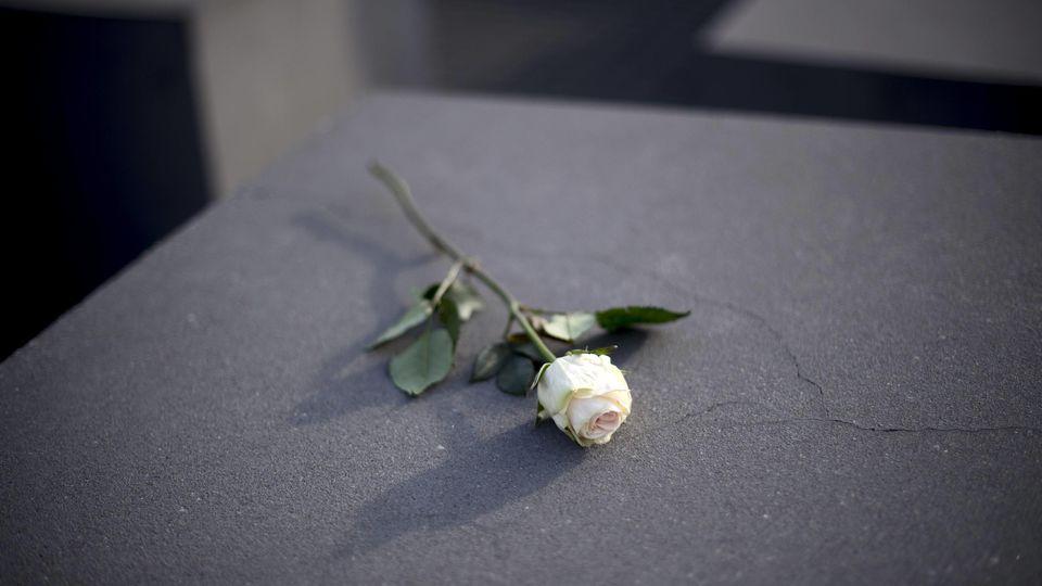 Gedenken Reichspogromnacht - Germany Commemorates 1938 November Pogroms Deu, Deutschland, Germany, Berlin, 08.11.2018 Weisse Rose auf einer Stele bei der Gedenkfeier und Demonstrantiom unter dem Motto Erinnern Gedenken Mitgehen 80 Jahre Pogromnacht a