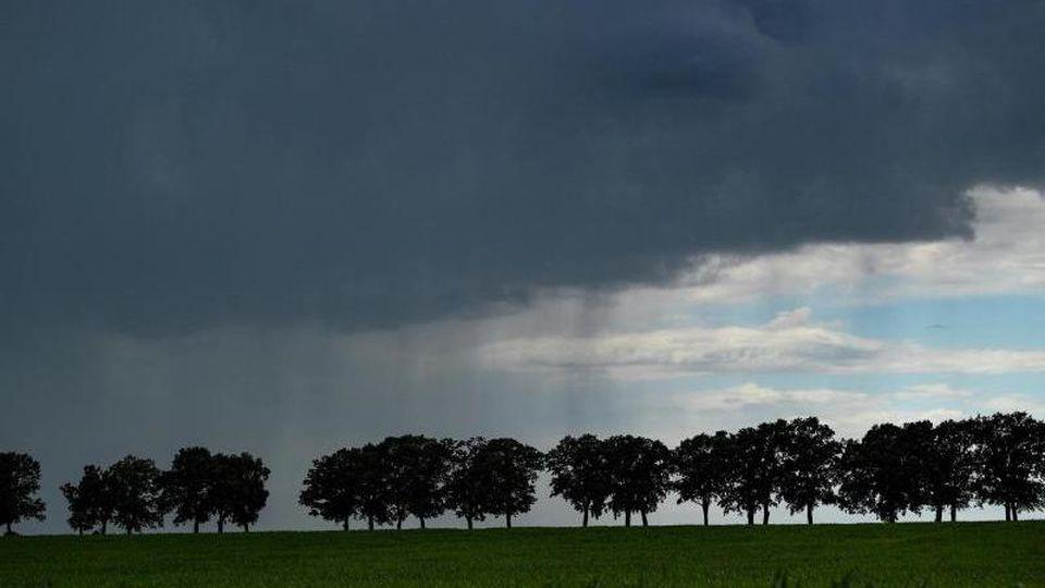 Dunkle Regenwolken ziehen über ein Feld. Foto: Patrick Pleul/dpa-Zentralbild/ZB/Archivbild