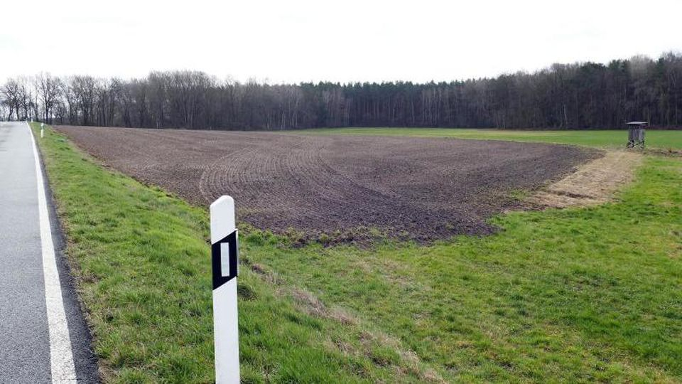 Blick auf die künftige, etwa 1,5 Hektar große Blühwiese an der Kreisstraße zwischen Dahrendorf und Kortenbeck. Foto: Sabrina Gorges/Archiv
