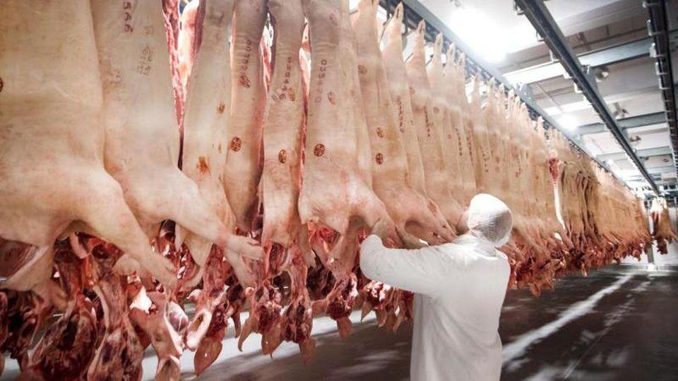 Frisch geschlachtete Schweine hängen in einem Kühlhaus des Fleischunternehmens Tönnies. Foto: Bernd Thissen/dpa/Archivbild