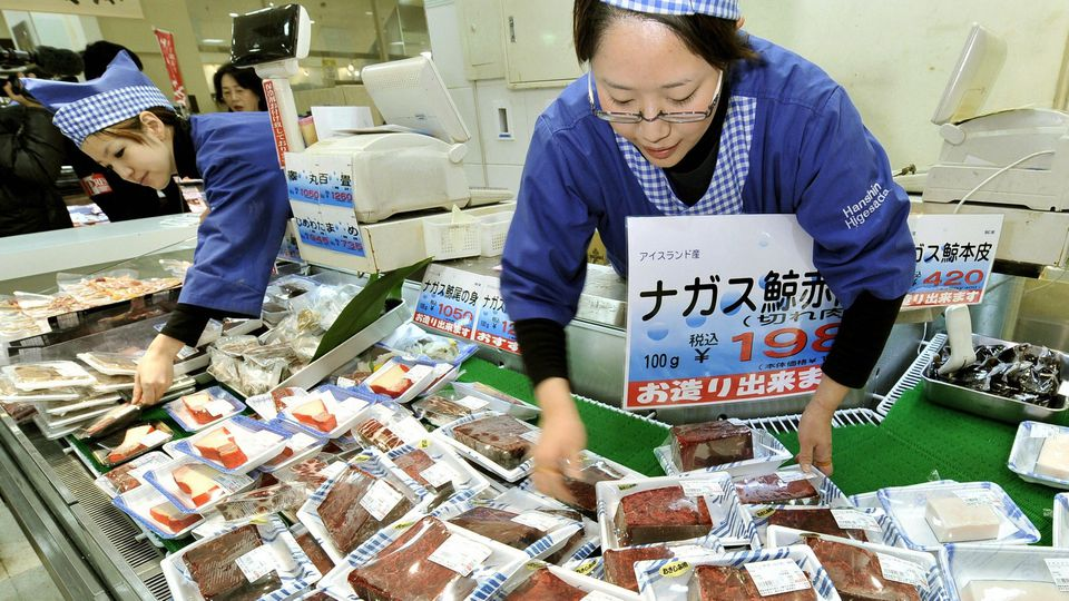 """TOKYO, Japan - Whale meat is sold at an Osaka department store in January 2011. Three-quarters of more than 1,200 tons of meat from whales caught during Japan's self-described """"research whaling"""" activities in the Northwest Pacific remains unsold, alt"""