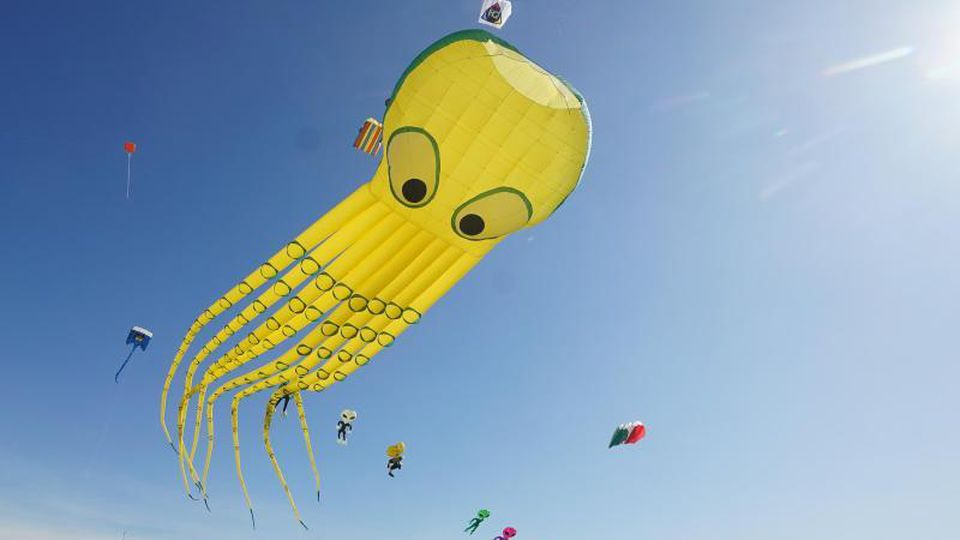 Zahlreiche Drachen sind beim Festival der Riesendrachen auf dem Tempelhofer Feld zu sehen. Foto: Jörg Carstensen