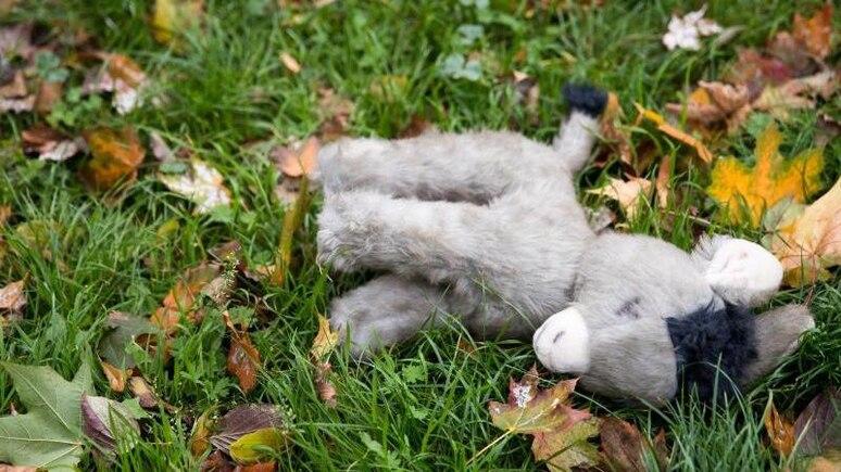 Ein verloren gegangener Plüsch-Esel liegt zwischen Blättern auf einer Wiese. Foto: Daniel Karmann/dpa/Symbolbild