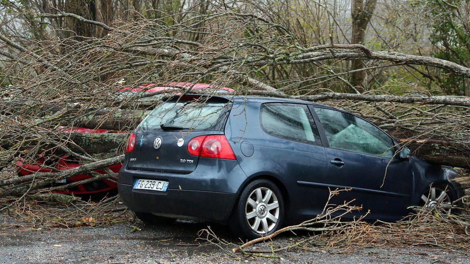 13.12.2019, Frankreich, Ascain: Ein umgestürzter Baum liegt auf einem Auto. Heftige Sturmböen haben den Südwesten Frankreichs und die Mittelmeerinsel Korsika getroffen. Mehrere Départements wurden wegen der Stürme in erhöhte Alarmbereitschaft versetz