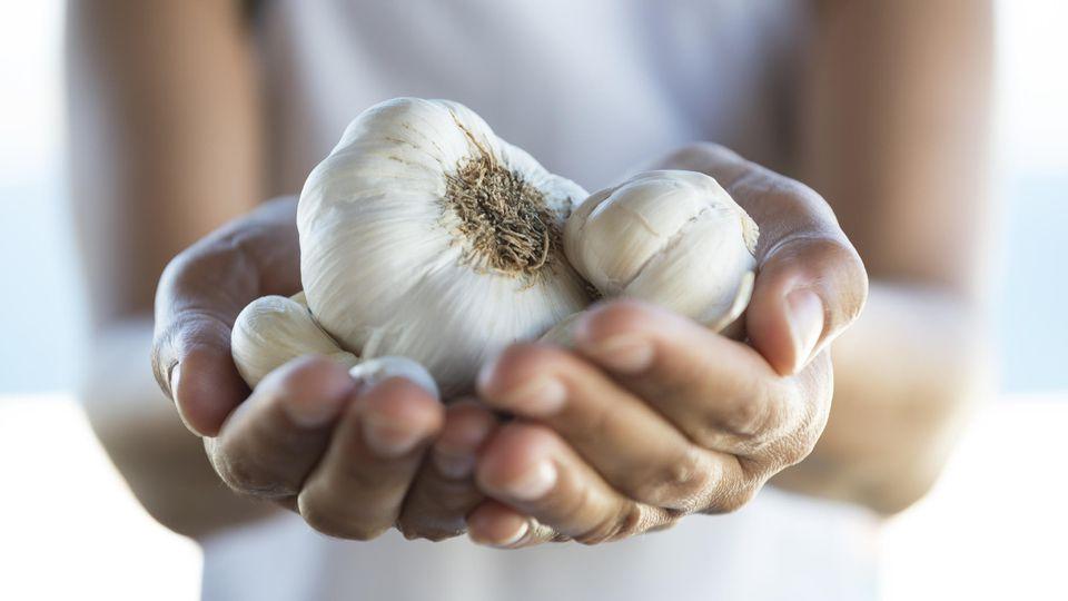 Knoblauch ist lecker und gesund - leider sorgt auch für heftigen Mundgeruch.