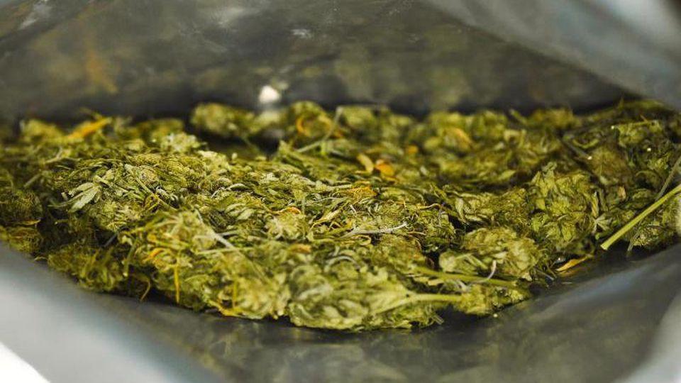 In einer Plastiktüte befindet sich sichergestelltes Marihuana. Foto: Nicolas Armer/dpa/Archivbild
