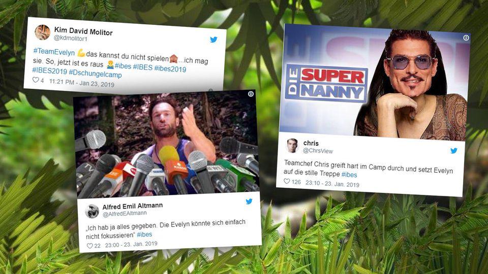 Die Twitter-Reaktionen zum 13. Tag im Dschungel.