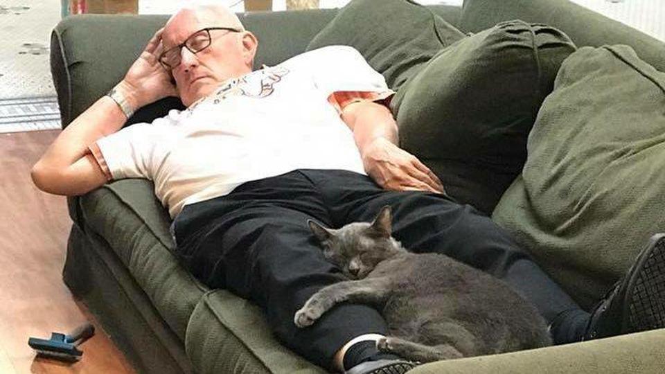 Auch auf die Katzen hat Terry Lauerman eine beruhigende Wirkung.