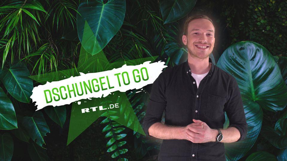 """Die Highlights aus dem Dschungelcamp bei  """"Dschungel to go"""""""