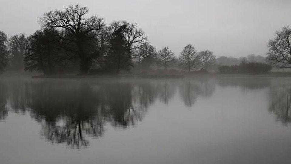 Bäume spiegeln sich bei trübem Wetter in einem See im Wörlitzer Park (Sachsen-Anhalt). Foto: Jan Woitas/dpa-Zentralbild/dpa