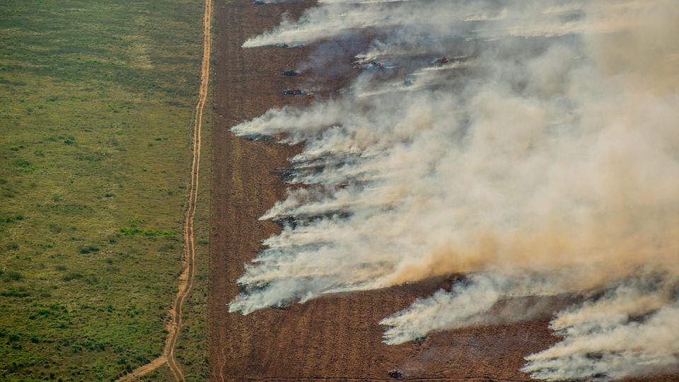 Es brennt schon wieder in Brasilien.