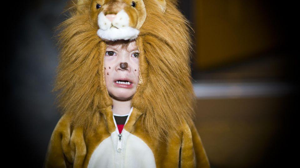 Dieses Kind scheint nicht allzu verliebt zu sein in sein Löwen-Kostüm.
