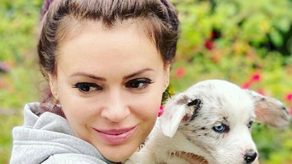 Alyssa Milano strahlt mit ihrem neuen Hund um die Wette