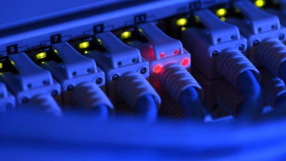 Ein Netzwerk-Kabelstecker leuchtet in der Netzwerkzentrale einer Firma zu Kontrollzwecken rot. Foto: Felix Kästle/dpa/Archivbild