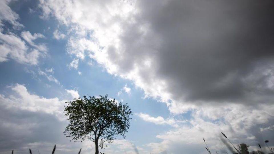 Dunkle Wolken ziehen am Himmel über einen Baum hinweg. Foto: Sina Schuldt/dpa/Archivbild