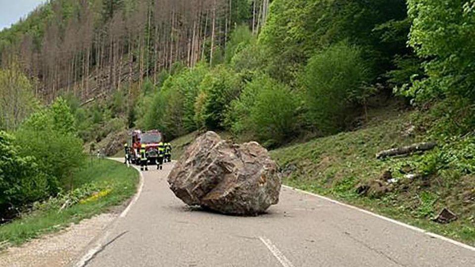 Ein großer Felsbrocken liegt auf einer Landstraße bei Todtnau. Foto: Klaus Merz/Baumamt Stadt Todtnau/dpa/Archivbild