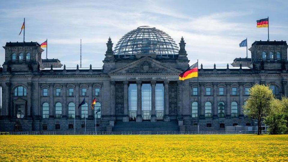 Löwenzahn blüht auf der Wiese vor dem Reichstagsgebäude in der Morgensonne. (Archivbild). Foto: Kay Nietfeld/dpa
