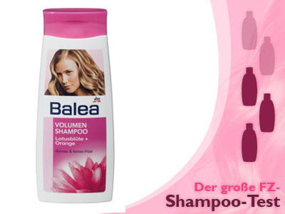 Feines Haar Shampoos Im Test