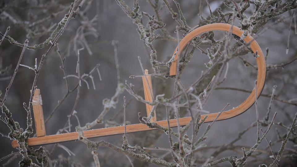 Überreste eines Schlitten hängen im Baum