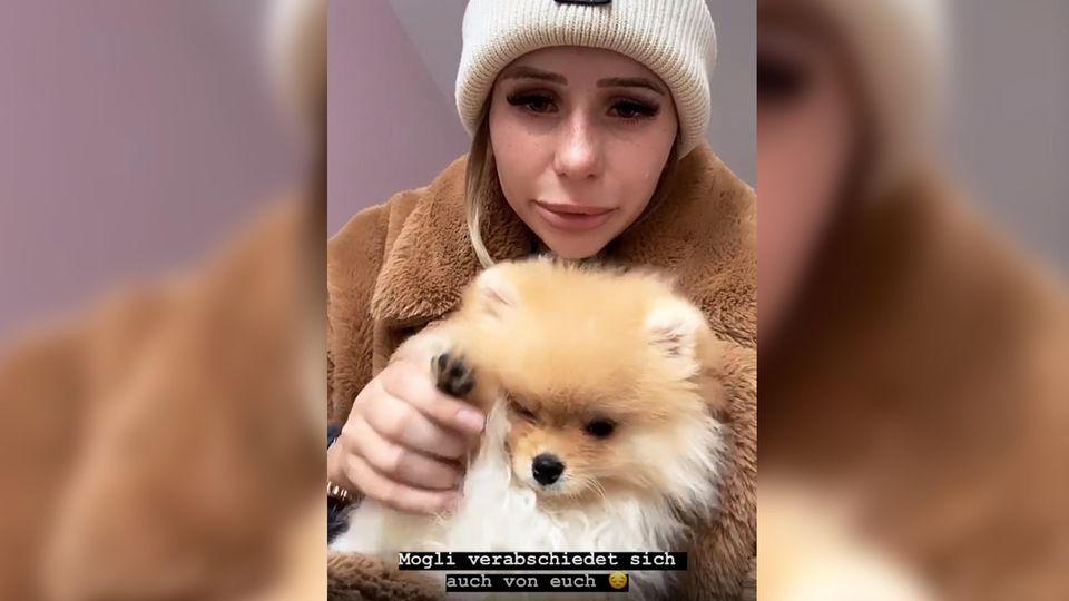 Carina Spack weint bittere Tränen: Sie muss Hund Mogli wieder abgeben.