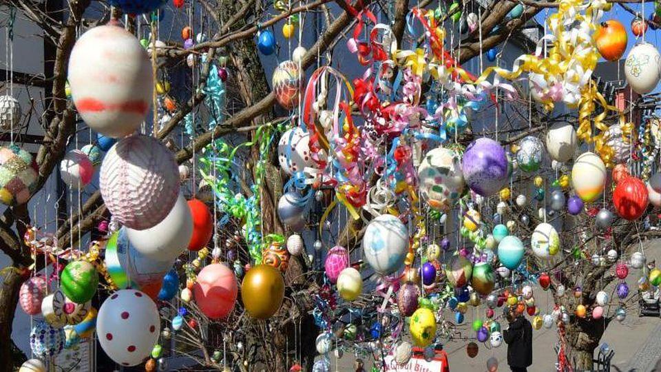 Der mit rund 1000 Eiern geschmückte Ostereierbaum steht in der Blankenburger Straße, der Fußgängerzone in der Altstadt. Foto: Martin Schutt/dpa-Zentralbild/dpa