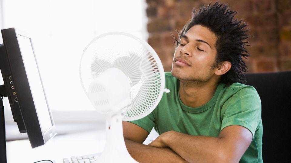 Der richtige Ventilator in Wohnung oder Büro bringt einen gesund durch den Sommer.