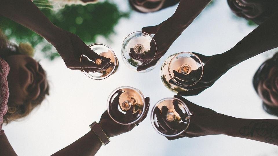 In Ostfriesland wird nun Wein angebaut