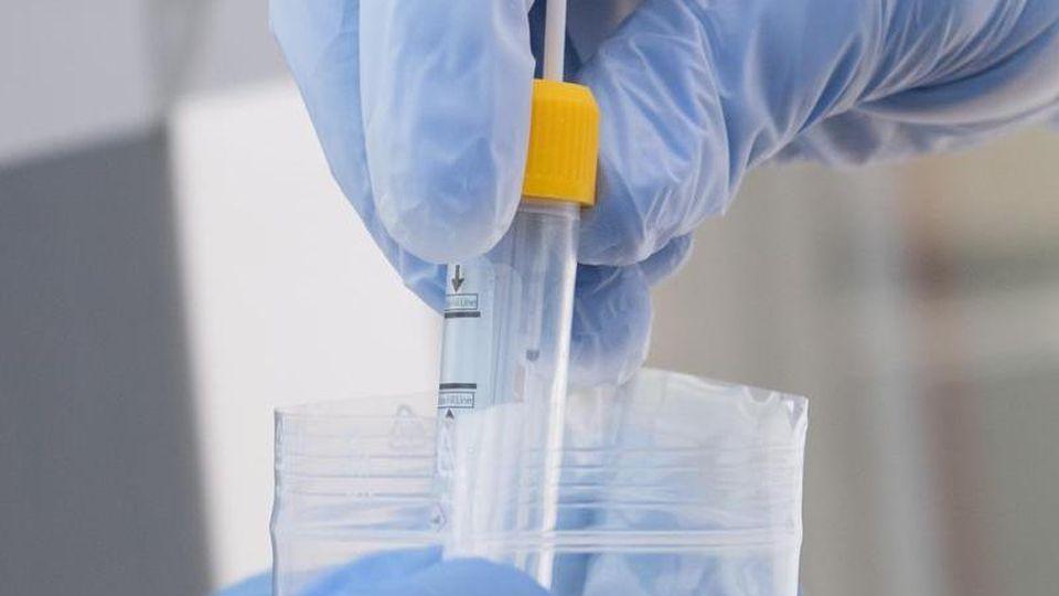 Ein Mitarbeiter steckt Corona-Tests ein benutztes Abstrichstäbchen in eine Schutztüte. Foto: Sebastian Kahnert/dpa-Zentralbild/ZB/Archivbild