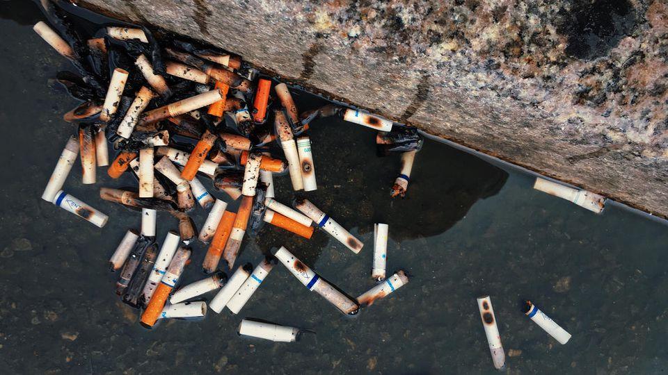 Zigaretten werden ein immer größer werdendes Umweltproblem.
