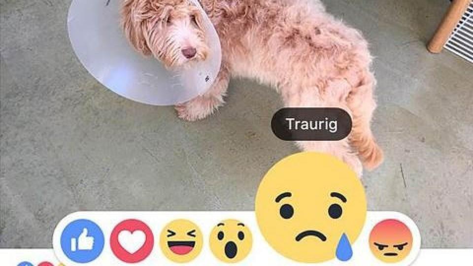 Facebook-Like-Button wird um Emojis erweitert