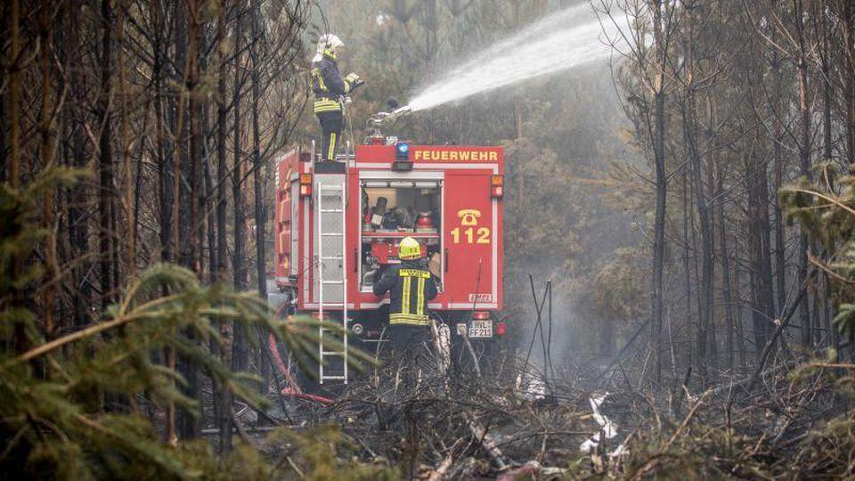 Feuerwehrleute bekämpfen zwischen eng stehenden Bäumen einen Waldbrand bei Treuenbrietzen. Foto:Michael Kappeler/Archivbild