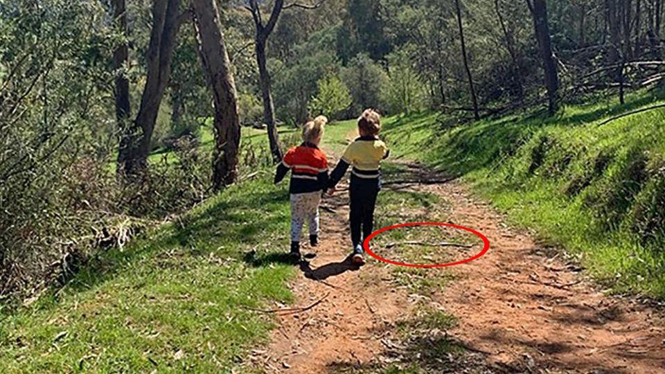 Schlange in Australien - Mutter macht Fotos von Kindern, erst später entdeckt sie die Todesgefahr