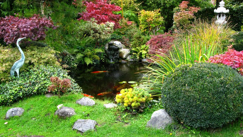 Ein Teich ist oft der Ruhepol im heimischen Garten