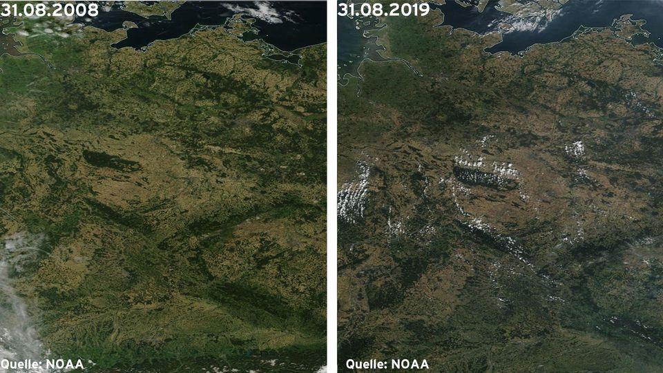 Links: Die Böden sind deutlich trockener (31.08.2019) ; Rechts: Die Flächen sind nicht ganz so braun und etwas grüner (31.08.2008)