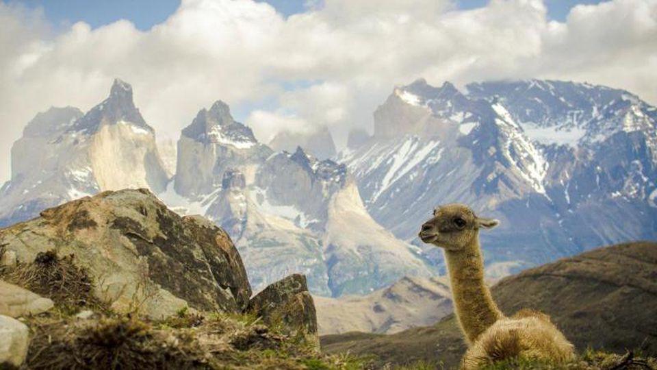 Nationalpark Torres del Paine in Patagonien. Foto: Francisco Negroni/EFE/Archivbild
