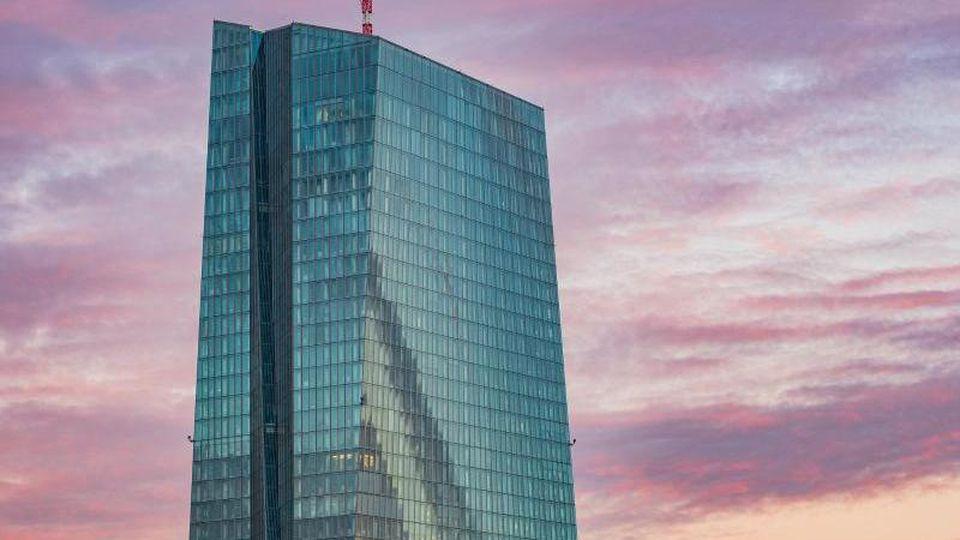 Die Europäische Zentralbank in Frankfurt am Main. Foto: Andreas Arnold/dpa