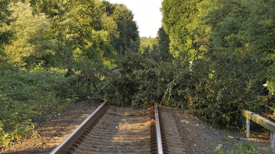 Im Norden gab es nach dem Mini-Sturm umgestürzte Bäume und Äste auf den Bahnschienen wie nach dem Pfingststurm Ela.